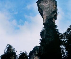 요자체(장가계 삼림 공원)